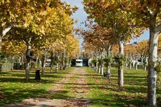 Huesca campsite
